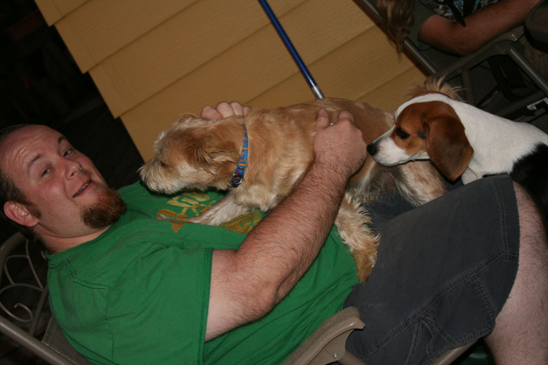 George is welcomed by the dogs, oh the dogs...