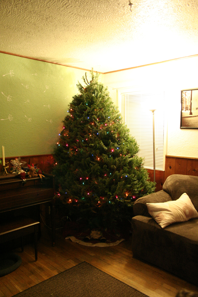 The lights are done (good job husband!)...now it's time to hang the ornaments...