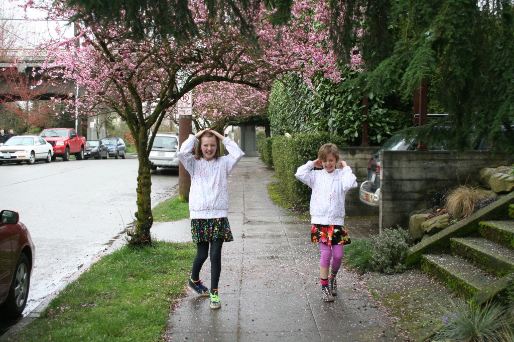 ...playing in the cherry blossoms...