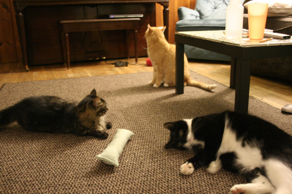 ...and then Napoleon came back on the scene and suddenly Big Ears was no longer that interested...
