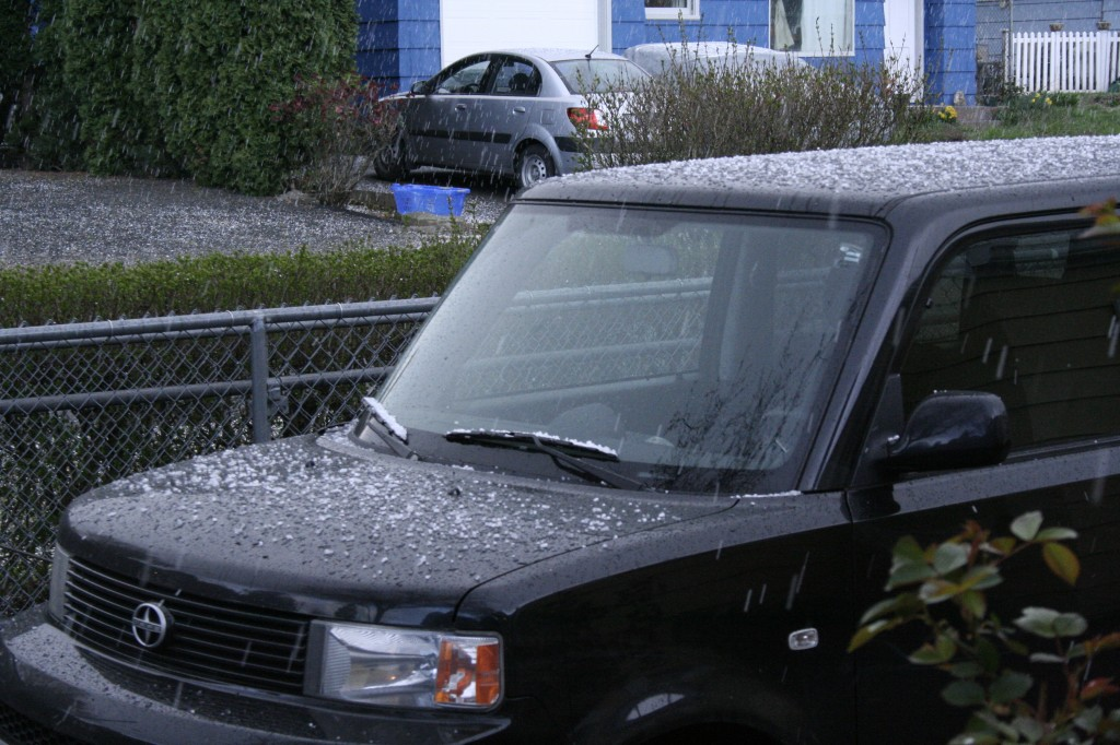 Hail piling up on the Scion..