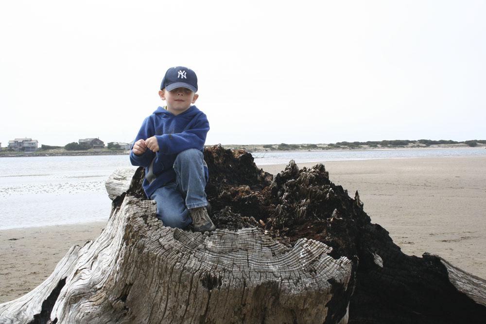 Wyatt, king of the tree stump...